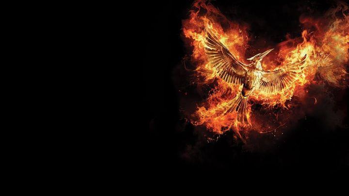 Una scena tratta dal film Hunger Games: Il canto della rivolta - Parte 2