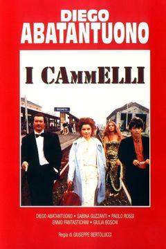 I Cammelli