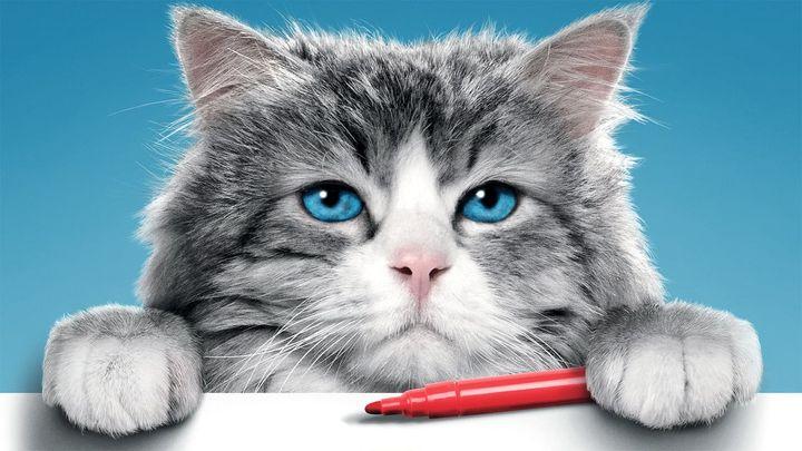Una scena tratta dal film Una vita da gatto