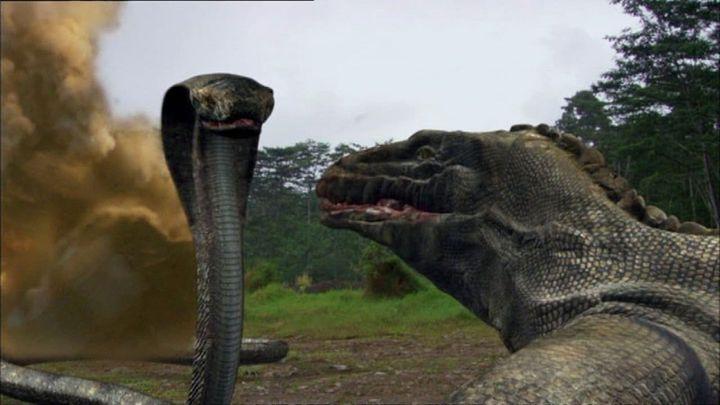 Una scena tratta dal film Komodo vs. Cobra