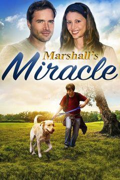 Marshall: un cane per amico