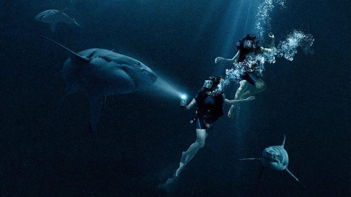 Una scena tratta dal film 47 metri