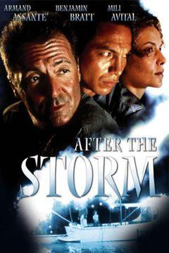 Locandina After The Storm