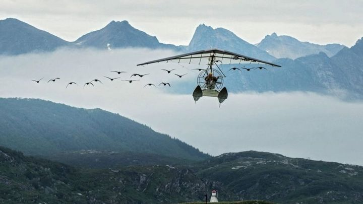 Una scena tratta dal film Sulle ali dell'avventura