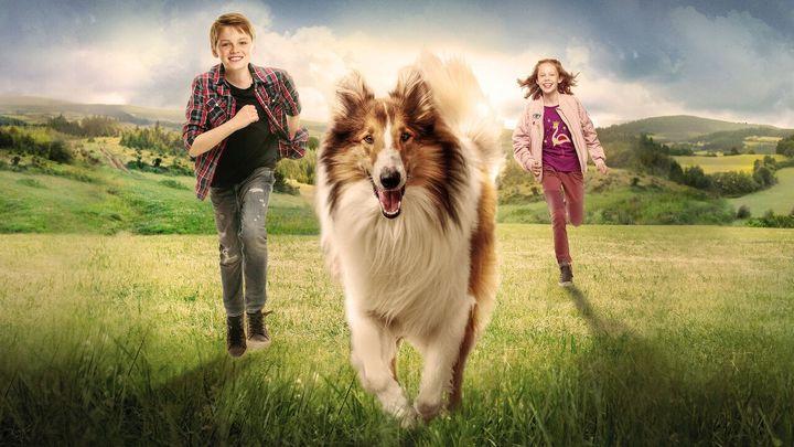 Una scena tratta dal film Lassie torna a casa