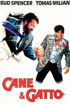 Locandina Cane E Gatto