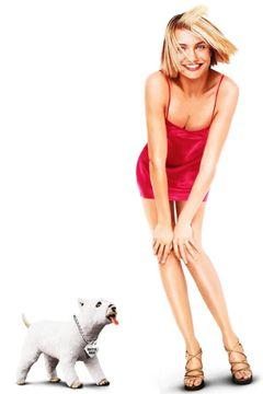 Locandina Tutti Pazzi Per Mary