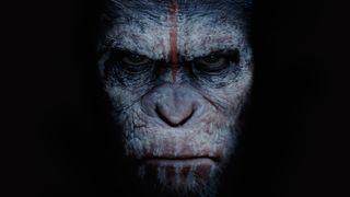 Film, Apes Revolution - Il Pianeta Delle Scimmie
