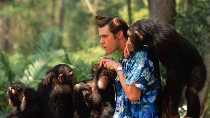 Una scena tratta dal film Ace Ventura - Missione Africa